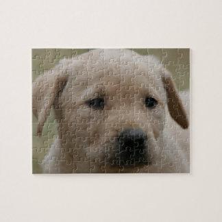 Yellow Lab puppy Puzzle 8X10