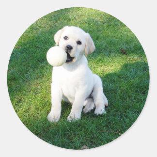 Yellow Lab Puppy Round Sticker