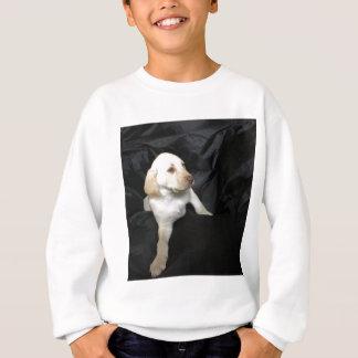 Yellow Lab Puppy Sadie Sweatshirt