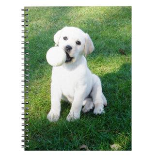 Yellow Lab Puppy Spiral Note Books