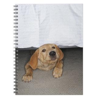 Yellow lab puppy stuck under bed spiral note book