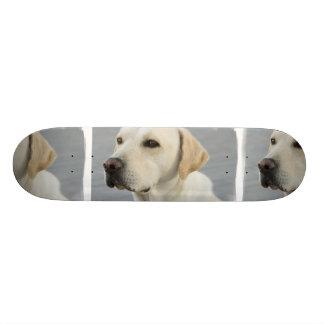 Yellow Lab  Skateboard