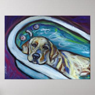 Yellow Labrador bath Poster