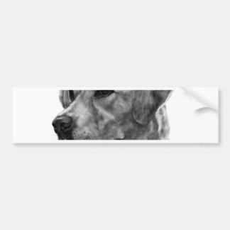 Yellow Labrador Bumper Sticker