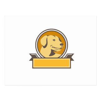 Yellow Labrador Golden Retriever Head Circle Retro Postcard