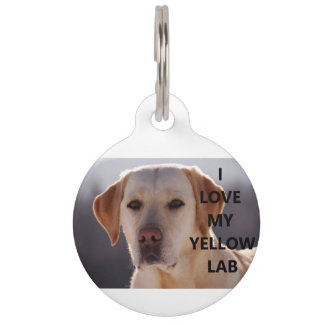 yellow labrador love w pic pet name tag
