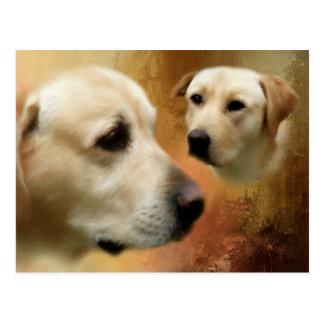 Yellow Labrador Retriever Dog Collage Postcard