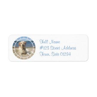 Yellow Labrador Retriever Dog Mailing Label