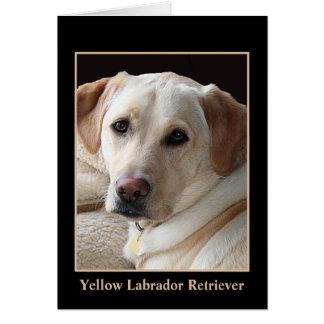 Yellow Labrador Retriever Greeting Card (blank)