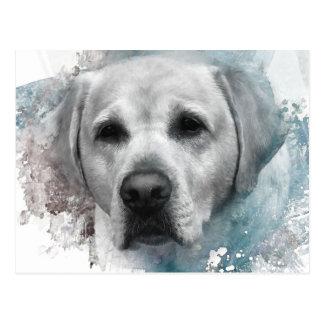 Yellow Labrador Retriever Portrait Postcard