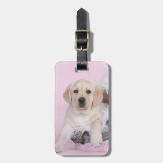 Yellow labrador retriever puppy bag tag