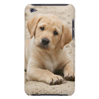 Yellow labrador retriever puppy Puppy in the sand iPod Touch Covers