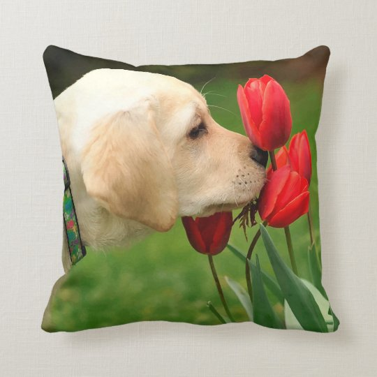 Yellow Labrador - Take Time Cushion