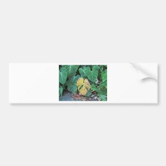 Yellow Leaf Car Bumper Sticker