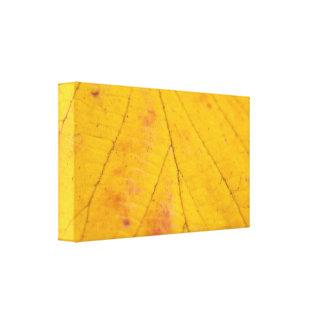 Yellow Leaf Macro Canvas Prints