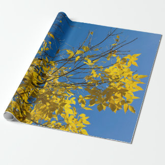 Yellow Leaves on Fall Tree Photo Wrapping Paper