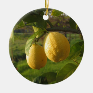 Yellow lemons growing on the tree at sunset ceramic ornament