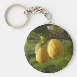 Yellow lemons growing on the tree at sunset key ring