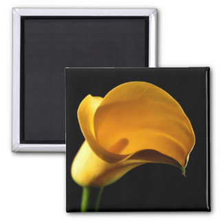 Yellow Lilly Square Magnet