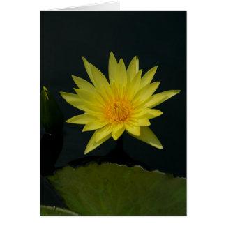 Yellow Lotus Waterlily Card