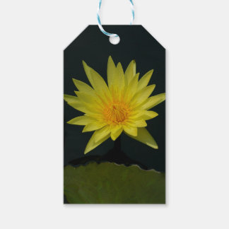 Yellow Lotus Waterlily Gift Tags