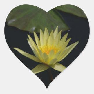 Yellow Lotus Waterlily Heart Sticker