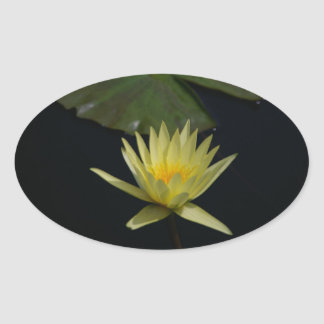 Yellow Lotus Waterlily Oval Sticker