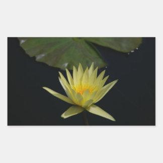 Yellow Lotus Waterlily Rectangular Sticker