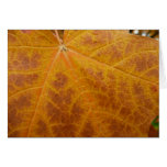 Yellow Maple Leaf Card