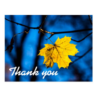 Yellow Maple Leaf On Blue Postcard