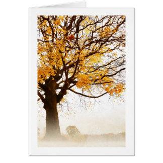 Yellow maple tree autumn in the mist, card