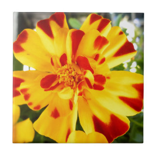 Yellow Marigold With Red Flecks Summer Flower Love Small Square Tile