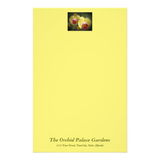 Yellow Moth Orchids - Phalaenopsis Customized Stationery