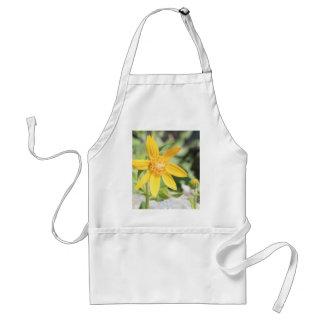 Yellow Mountain Wildflower Adult Apron