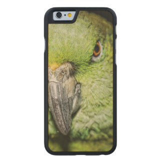 Yellow-Naped Amazon Parrot Carved® Maple iPhone 6 Case