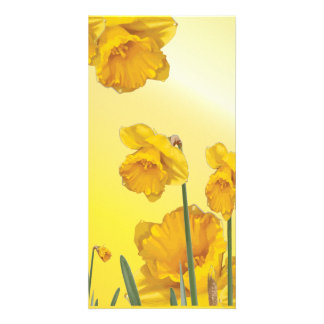 Yellow Narcissus Daffodil Retro Vintage Customised Photo Card