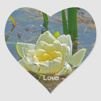 Yellow Nymphaea Alba Love Heart Sticker
