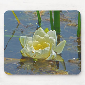 Yellow Nymphaea Alba Mouse Pad