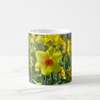 Yellow orange Daffodils 01.0.2 Coffee Mug