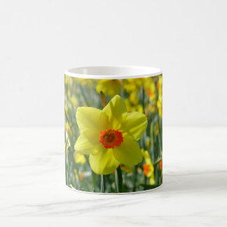 Yellow orange Daffodils 01.0 Coffee Mug