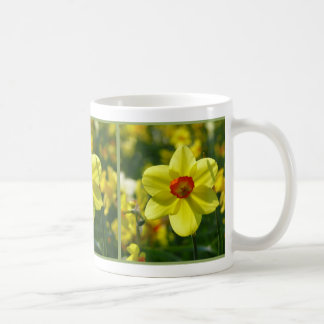 Yellow orange Daffodils 02.1.2.g Coffee Mug