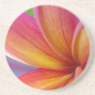 Yellow Orange Deep Pink Tropical Plumeria Flower Coaster