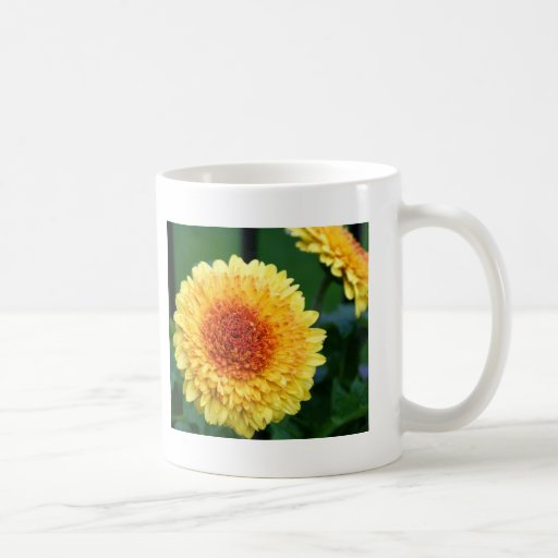 Yellow-Orange Gerber Daisy Mug