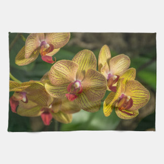 Yellow orchids kitchen towel