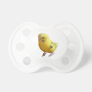Yellow Parakeet Photograph Baby Pacifiers