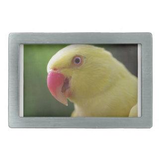 Yellow Parrot Belt Buckle