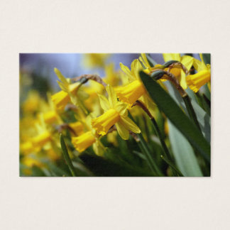 yellow påskliljor business card
