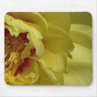 Yellow peony mouse pad