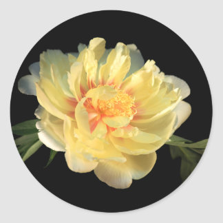 Yellow Peony Wedding Envelope Seal Stickers