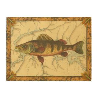 Yellow Perch on Map Wood Print